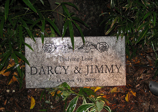 A Special Halloween Touch: From Jim and Darcy's Halloween Wedding